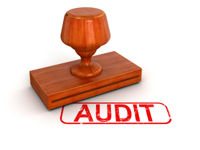 Audits for Privately Held Companies